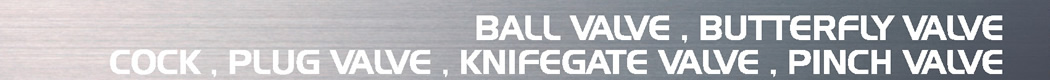 ボールバルブ バタフライバルブ BALL VALVE, BUTTERFLY VALVE, COCK, PLUG VALVE, KNIFEGATE VALVE, PINCH VALVE